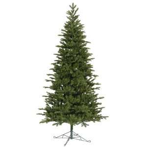 9.5 x 59 Maine Balsam Fir Christmas Tree w/ 4619T: Home