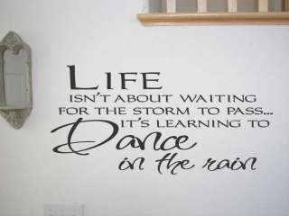 Vinyl Decal Sticker ~ LIFE ISNT ABOUT WAITING FOR STORM TO