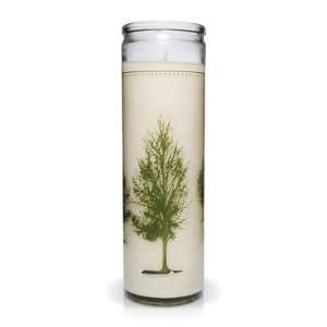 K. hall designs Conservatory Collection Printed Candle