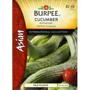 Burpee 69672 Asian   Cucumber Armenian Seed Packet: Patio