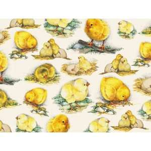 Baby Chicks Rolled Gift Wrap Paper Office Products