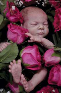 Rosebud by Cindy Musgrove New Reborn Kit to make a Sweet baby