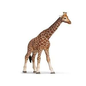 Female Giraffe ~5.5 Mini Figure Schleich Wild Life Giraffe