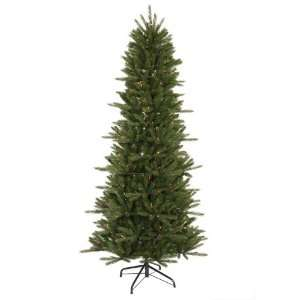 12 x 61 Vermont Frasier Fir Slim Instant Shape Tree w