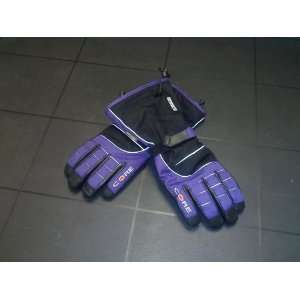 Heated Core Heat Snow Gloves Womens Purple(battery Powered