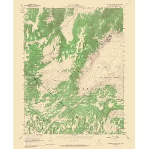 USGS TOPO MAP HUNTOON VALLEY QUAD NEVADA (NV)   CALIFORNIA