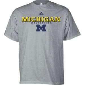 Michigan Wolverines Grey adidas Impervious T Shirt