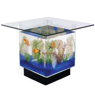 Lighted Filtered AQUARIUM COFFEE TABLE Beveled Tempered Glass Top