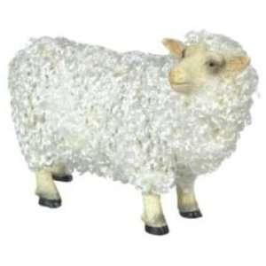 Male Sheep w/ Hair