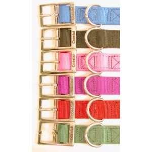 Coastal 3/4 Pink Nylon Standard Collar