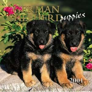 German Shepherd Puppies 2001 Calendar (9780763129859