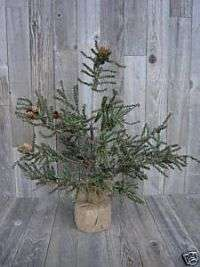 Ft Primitive Charlie Brown Twig Christmas Twiggy Tree w Burlap Base