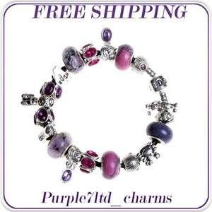 crystal lampwork silver pendant European beads charm bracelet ZN4