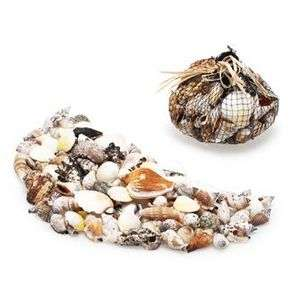 COASTAL DECOR Mixed Bag Sea Shells HOME DECOR VASE FILLER NEW