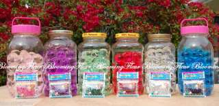 Bio Gel CRYSTAL Water Beads for Lucky Bamboo etc. 4 pck