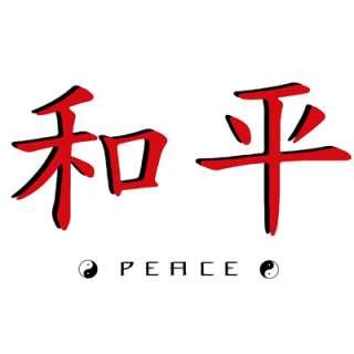 Chinese Peace Tao Zen Yin Yang Tai Chi T Shirt