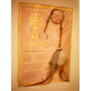 Follow Your Dreams    Dreamcatcher    Lakota [Sioux] children    as