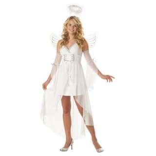 Heavens Angel Adult Costume   Includes Dress, sleeves, halo, wings