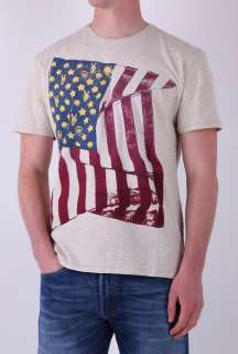 White American Flag T Shirt by Levis   White   Buy T Shirts Online at