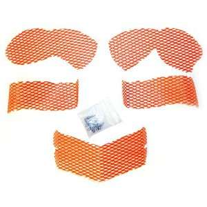 Screen Kit Arctic Cat Orange Automotive