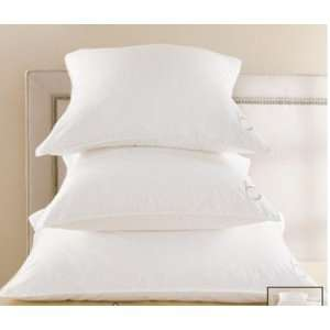 At Home Euro Signature Pillow 28 x 28 by Hollander