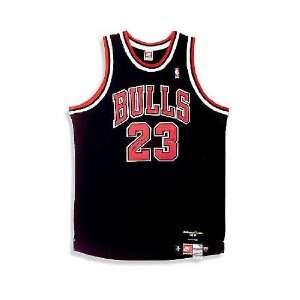 Michael Jordan Chicago Bulls   Retirement Season