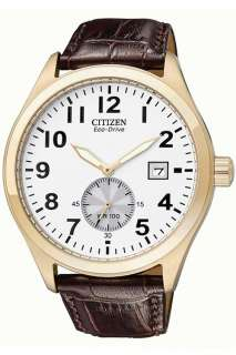 Citizen Gents Eco Drive Strap Watch BV1063 09A | the Watch Hut