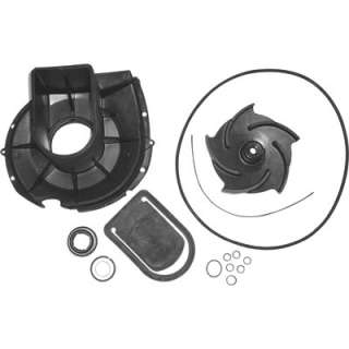 Pacer Pump Rebuild Kit #58 702EP P